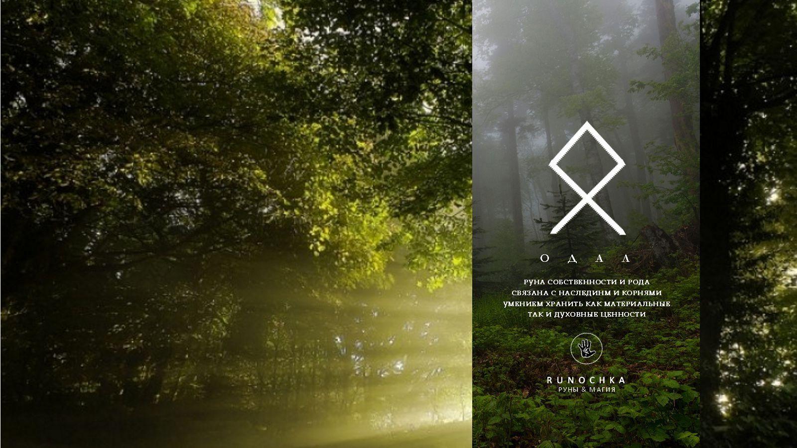 Руна Одал: значение, описание и ее толкование с фото